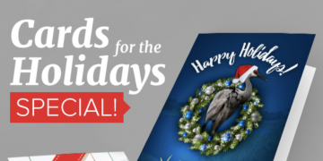 It's that time of year again! Custom holiday cards are here!