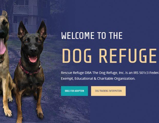 The Dog Refuge